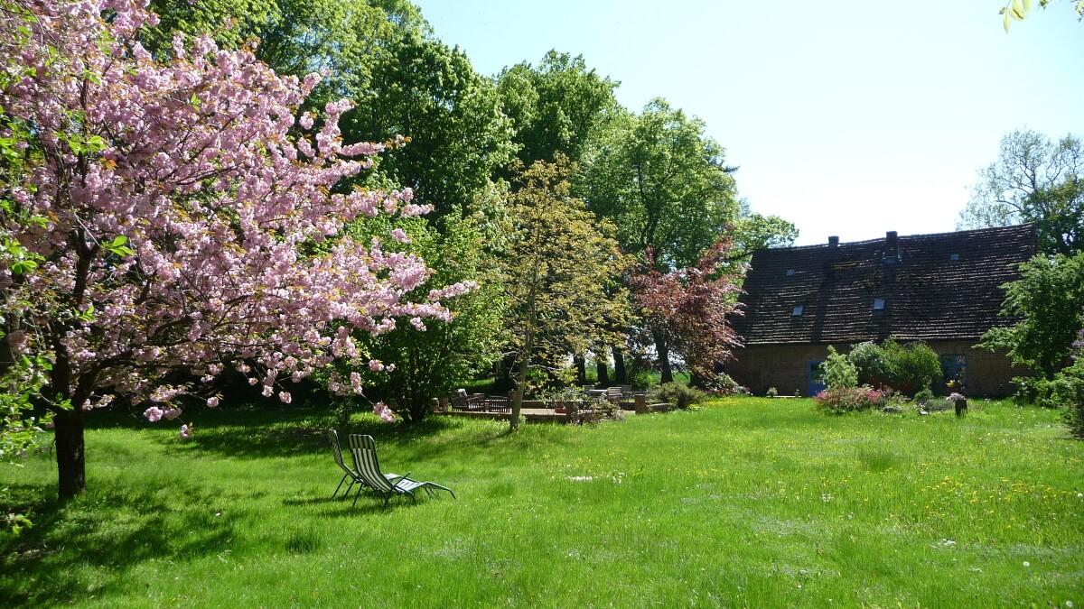 Große Liegewiese im Frühling. | Ferienwohnungen Müritz - Alte Ziegelei