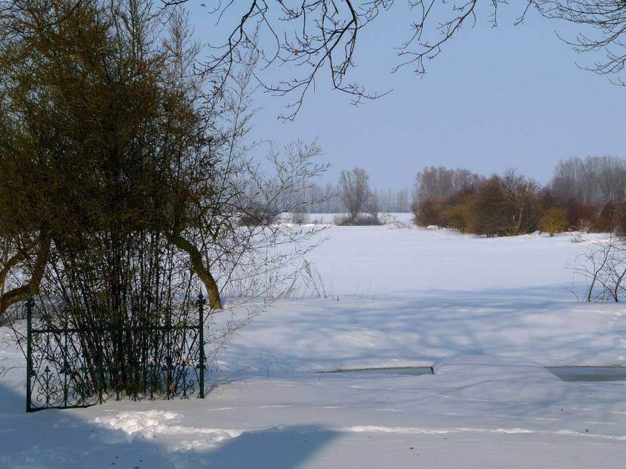 Ausblick im Winter. | Ferienwohnungen Müritz - Alte Ziegelei
