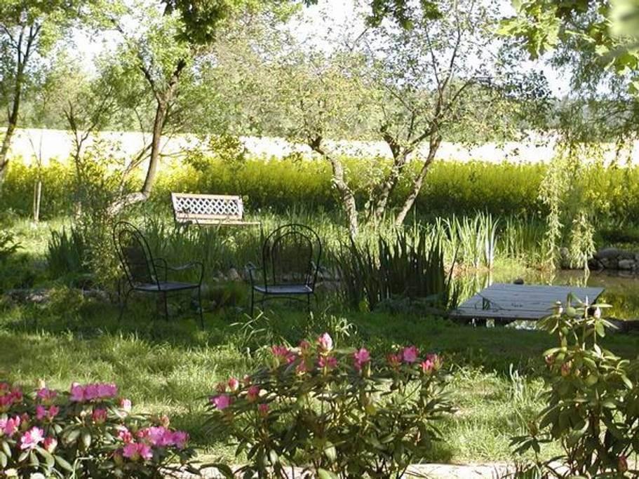 Am Teich. | Ferienwohnungen Müritz - Alte Ziegelei