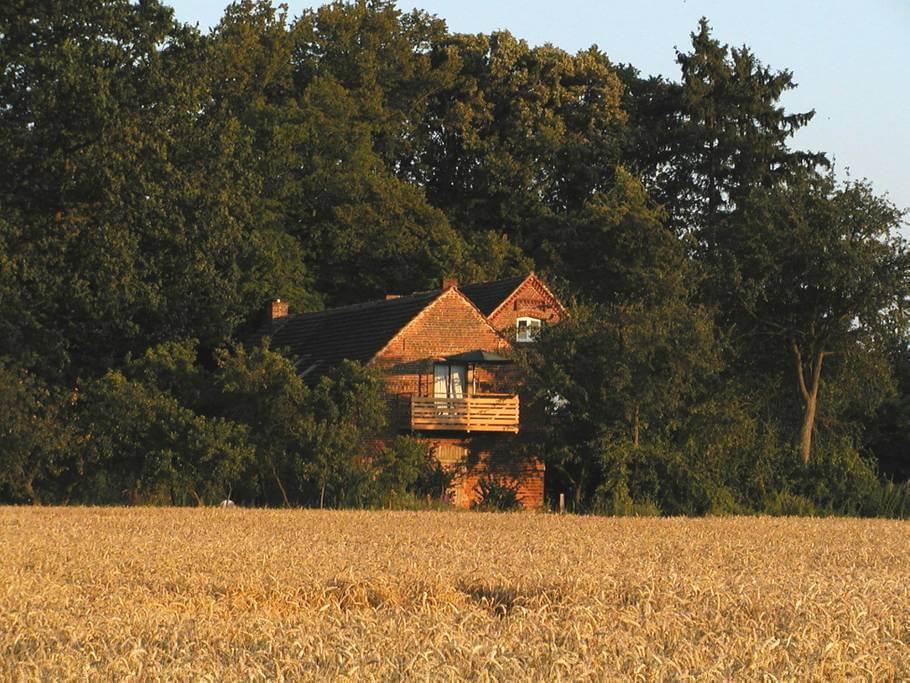 Blick auf beide Häuser von Außen. | Ferienwohnungen Müritz - Alte Ziegelei