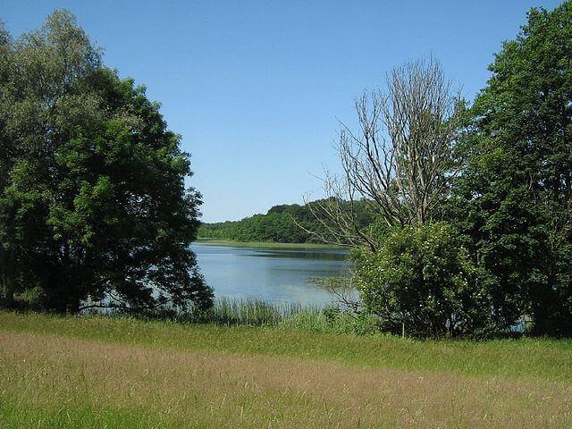 Dambecker-See. | Ferienwohnungen Müritz - Alte Ziegelei
