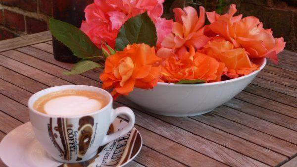Cappuccino servieren wir gerne im Garten. | Ferienwohnungen Müritz - Alte Ziegelei