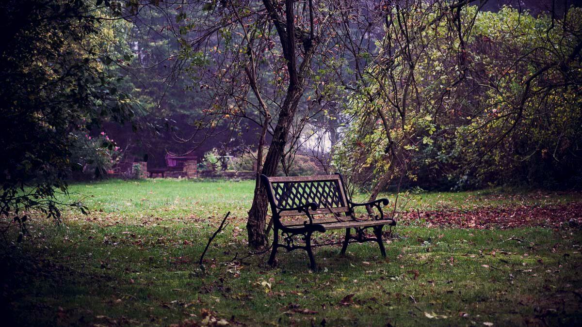 Ruheplatz im Garten. | Ferienwohnungen Müritz - Alte Ziegelei