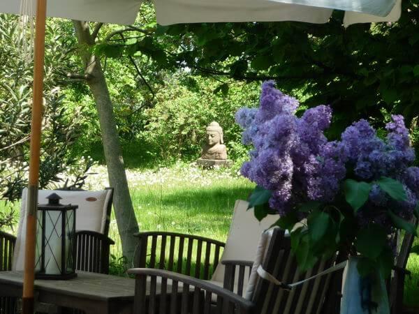 Ausblick von der großen Terrasse. | Ferienwohnungen Müritz - Alte Ziegelei