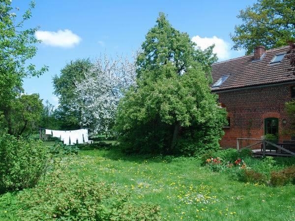Große Liegewiese im Obstgarten. | Ferienwohnungen Müritz - Alte Ziegelei