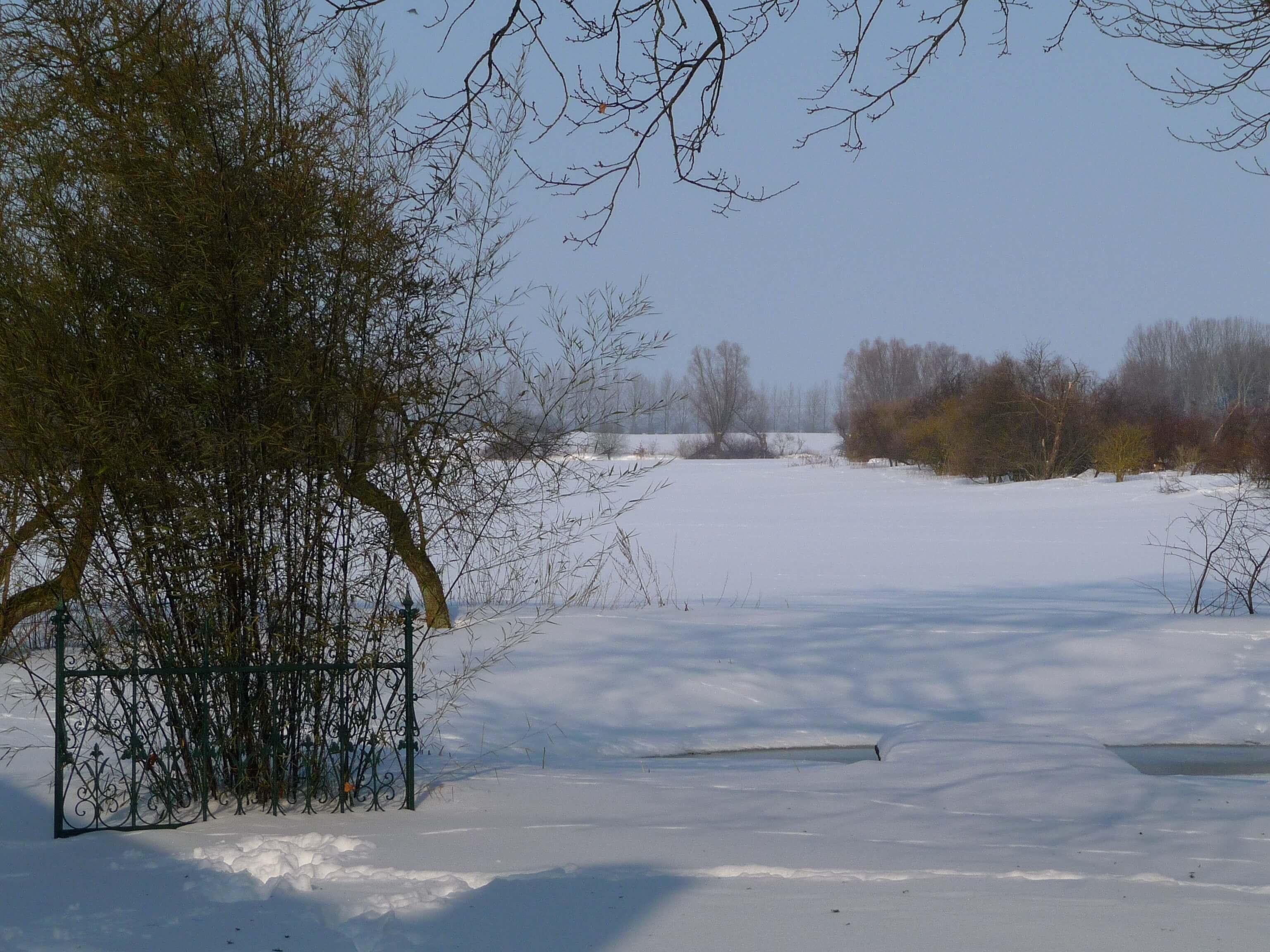 Ausblick vom Teich im Winter. | Ferienwohnungen Müritz - Alte Ziegelei