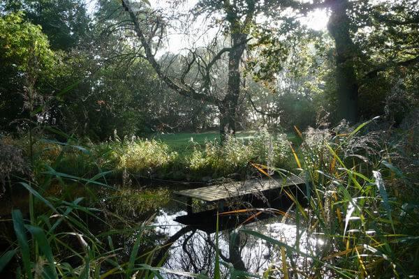Ruheplatz am Teich. | Ferienwohnungen Müritz - Alte Ziegelei