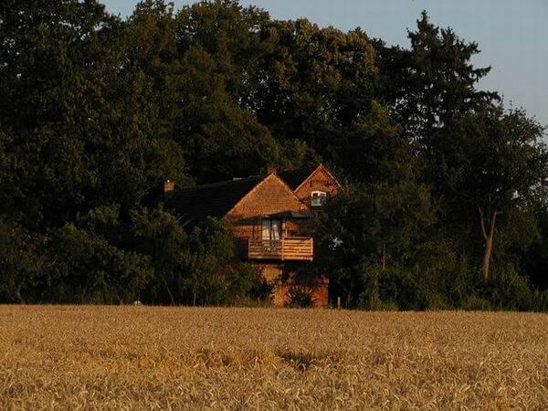Einblick zum Ferienhaus. | Ferienwohnungen Müritz - Alte Ziegelei