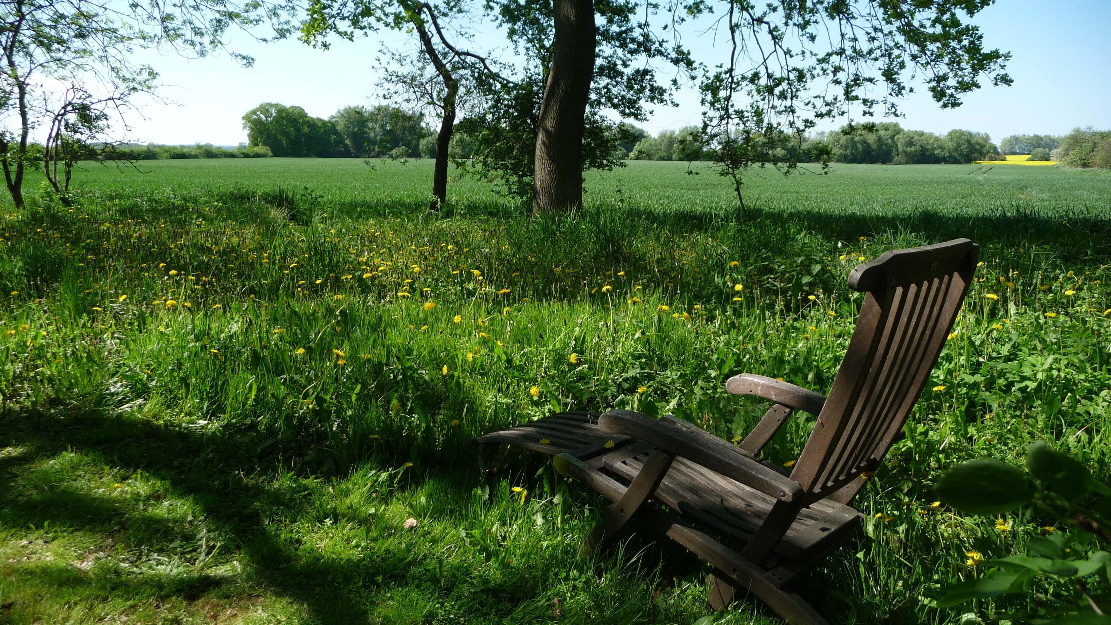 Ausblick am Feldrand. | Ferienwohnungen Müritz - Alte Ziegelei