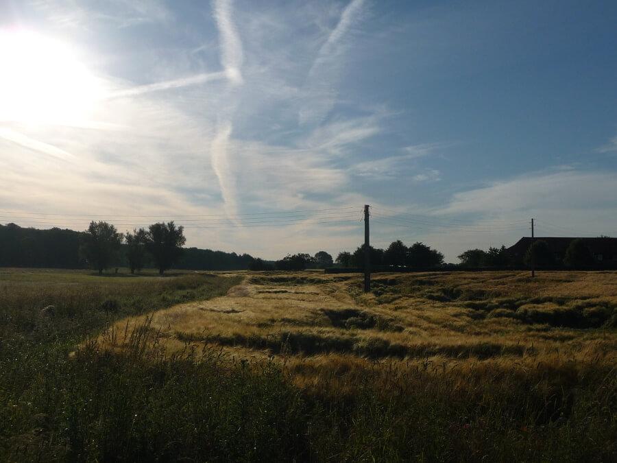 Blick zum Nachbarort Solzow. | Ferienwohnungen Müritz - Alte Ziegelei