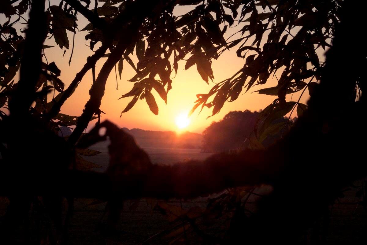 Genießen Sie die Ruhe. | Ferienwohnungen Müritz - Alte Ziegelei