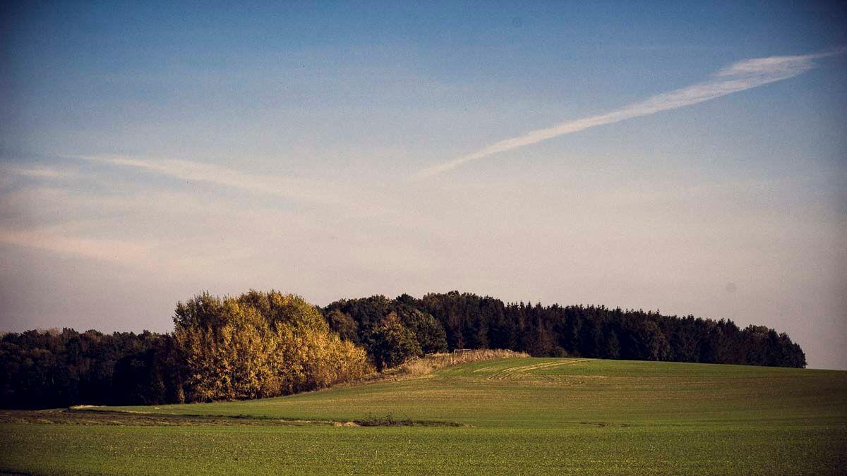 Die Umgebung. | Ferienwohnungen Müritz - Alte Ziegelei