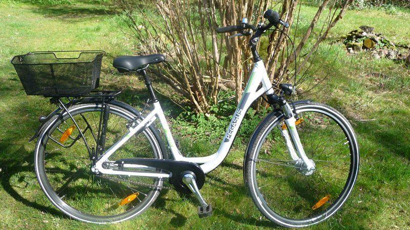 Fahrradverleih für unsere Hausgäste. | Ferienwohnungen Müritz - Alte Ziegelei